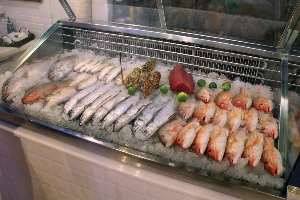 Peixes expostos no restaurante em São Miguel do Gostoso